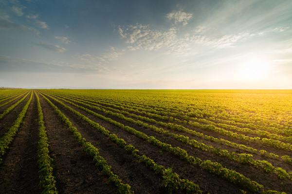 Benefits Contractors Enjoys From Soil Stabilizer Machine